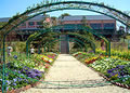 モネの庭写真