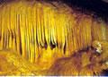 龍河洞写真